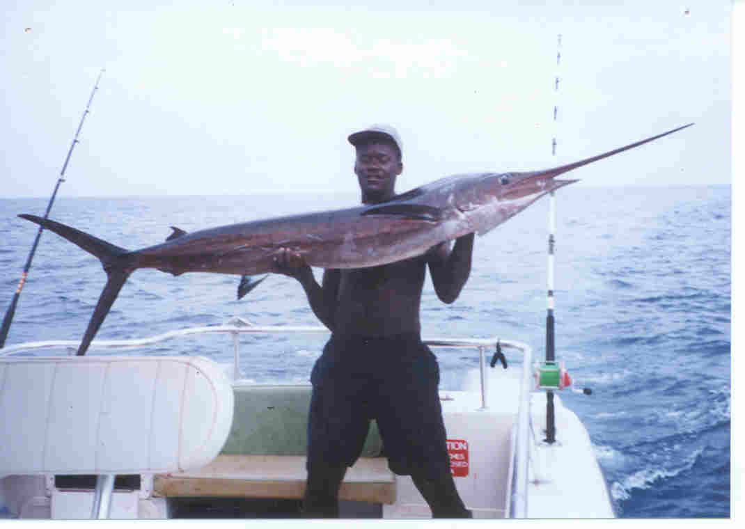 sailfish2.jpg